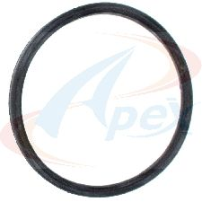 Apex Engine Coolant Outlet O-Ring