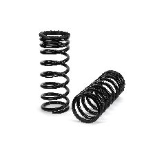 Arnott Air Spring to Coil Spring Conversion Kit  Rear