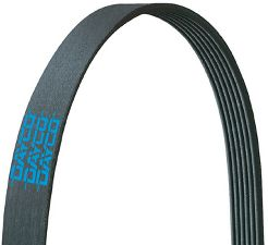 Dayco Serpentine Belt  Air Conditioning and Alternator