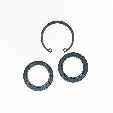 Edelmann Steering Gear Pitman Shaft Seal Kit  Lower