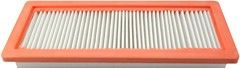 Hastings Air Filter
