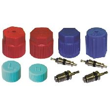 LKQ A/C System Valve Core and Cap Kit