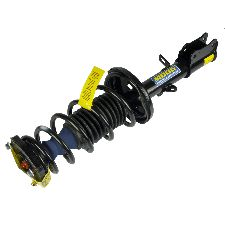 Moog Suspension Strut and Coil Spring Assembly  Rear Right