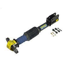 Moog Suspension Strut Assembly  Rear