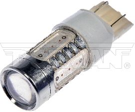 Motormite Tail Light Bulb