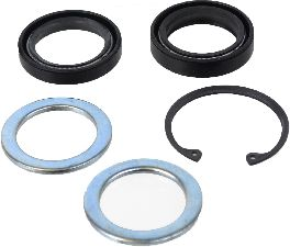 SKF Steering Gear Pitman Shaft Seal Kit