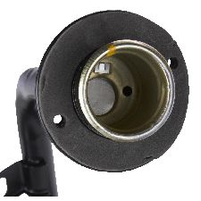 Spectra Fuel Filler Neck