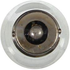 Wagner Lighting Courtesy Light Bulb