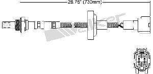 Walker Oxygen Sensor  Downstream Right
