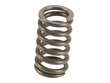 Genuine Exhaust Bolt and Spring