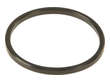 Mahle Engine Oil Cooler Seal