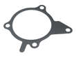 Genuine Engine Water Pump Gasket