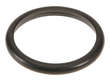 Motorcraft Engine Coolant Outlet Gasket