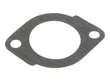 Ishino Stone Engine Water Pump Gasket