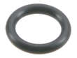 Ishino Stone Fuel Injection Pressure Regulator O-Ring