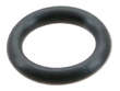 Ishino Stone Fuel Injector Seal