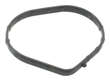 Ishino Stone Engine Coolant Outlet Gasket