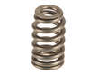 Genuine Engine Valve Spring
