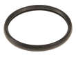 AISIN Engine Coolant Thermostat Seal