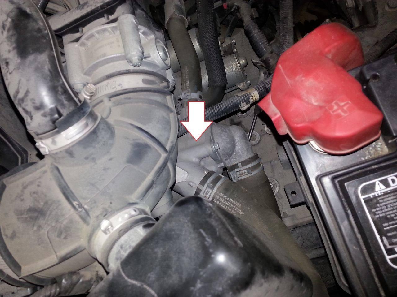 Engine Coolant Thermostat-DOHC MOTORCRAFT RT-1150